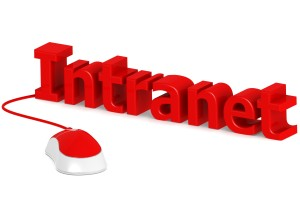 the company intranet